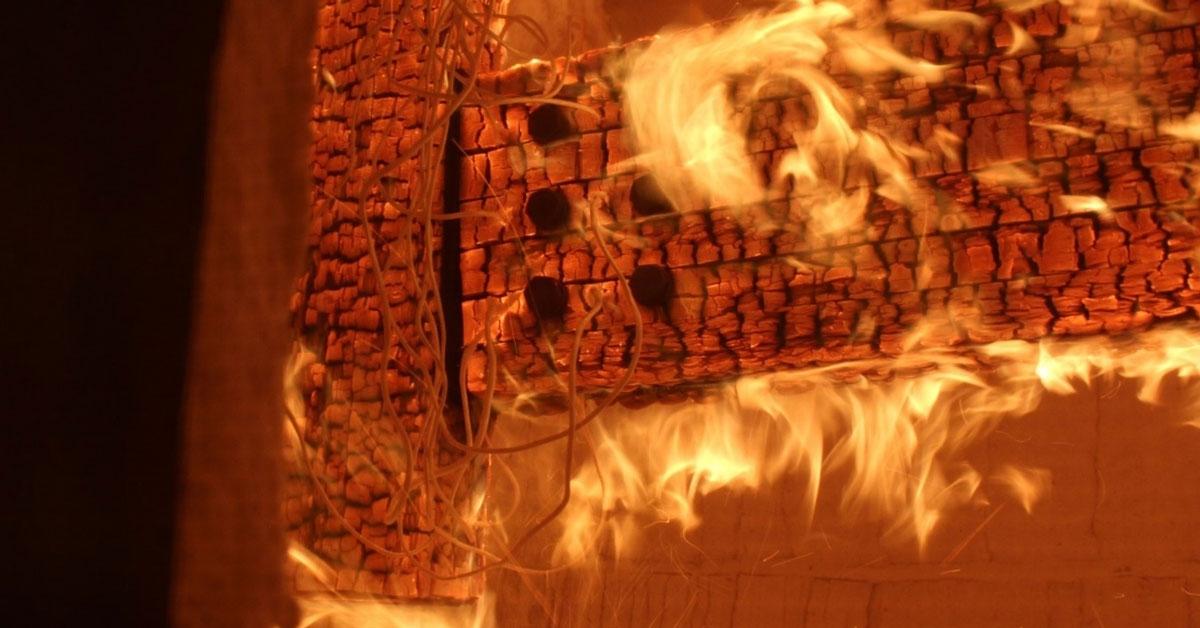 Prueba de Cape Reed Fireshield en madera